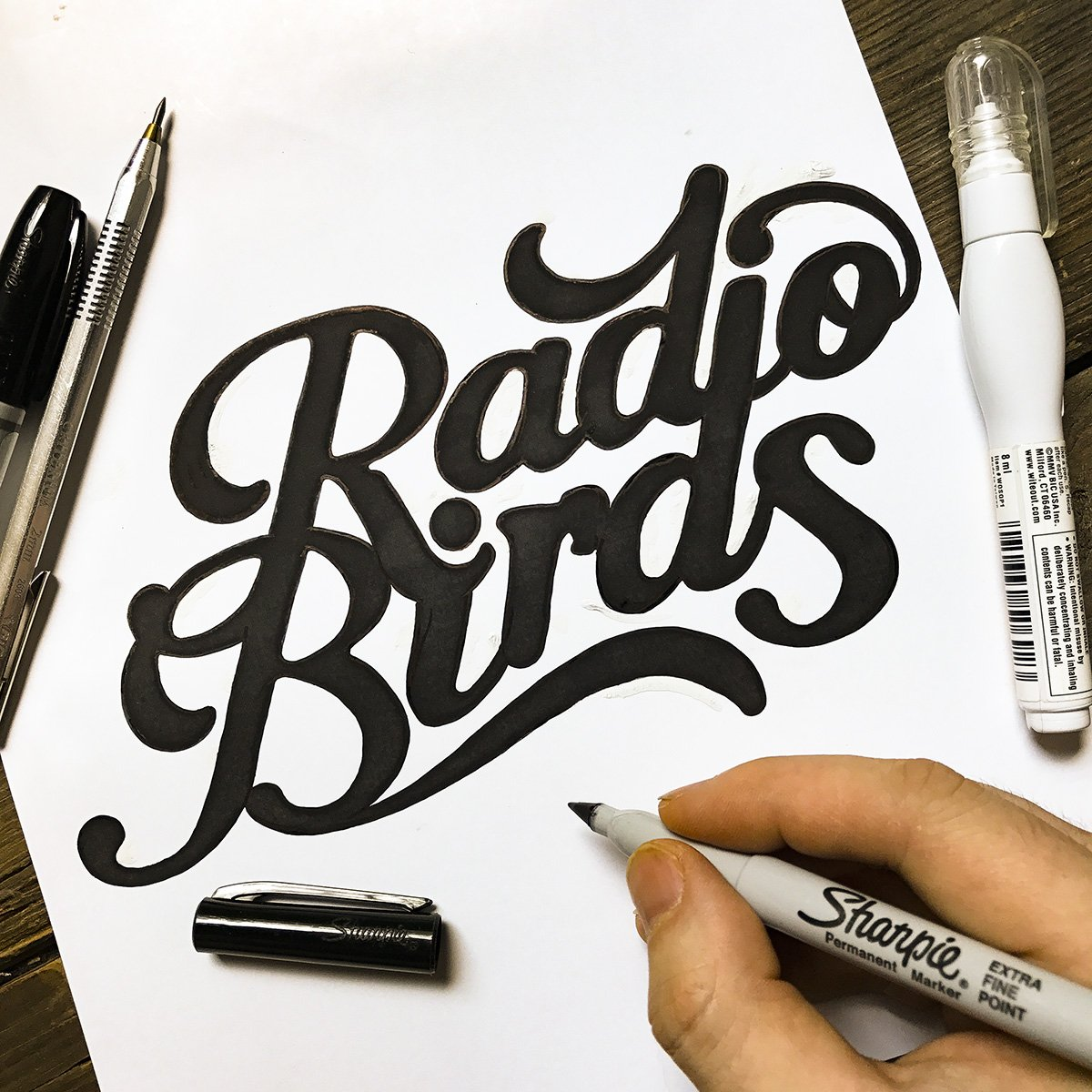 Radio Birds logo for Brash Music